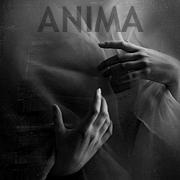 anima-johanna-knauer-galerie-sw-portraits