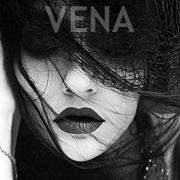 vena-johanna-knauer-sw-galerie-portraits